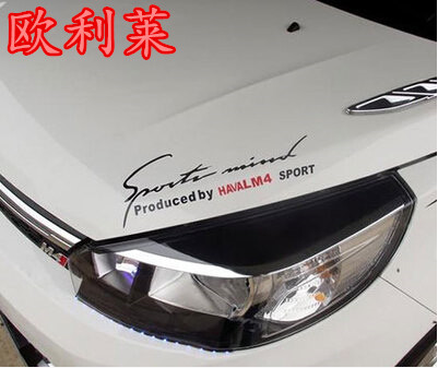 Haversian m4 for great wall lamp eyebrow posted haversian m4 lamp for eyebrow posted car sticker mei<br><br>Aliexpress