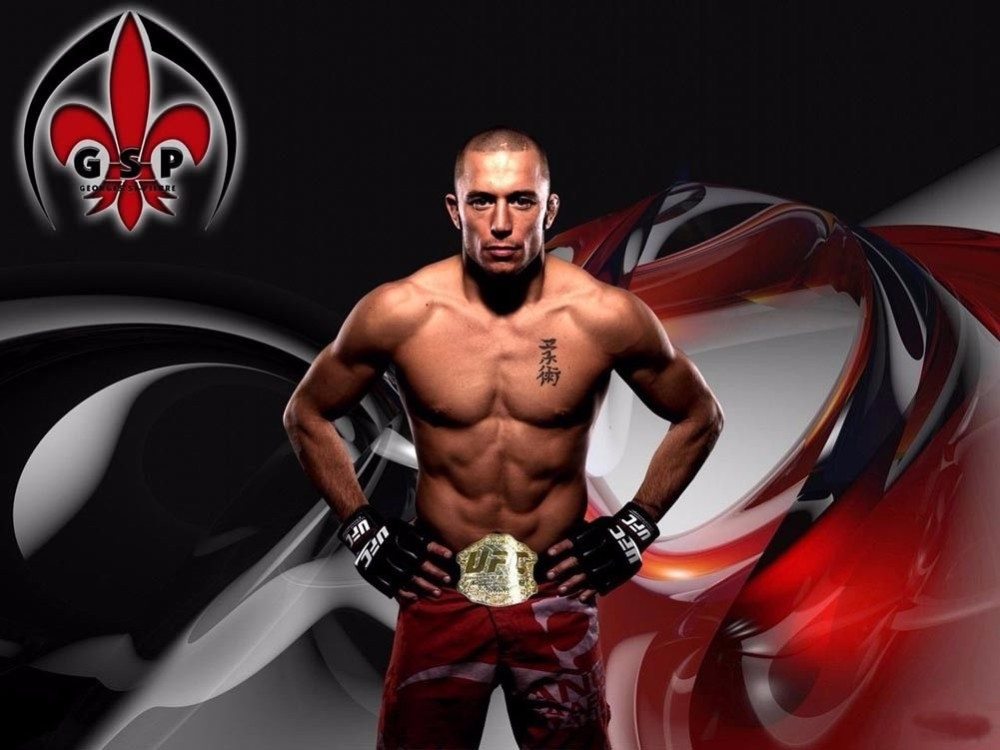 3217 Georges St.Pierre Mixed Martial 24x36 Art Silk Wall Poster