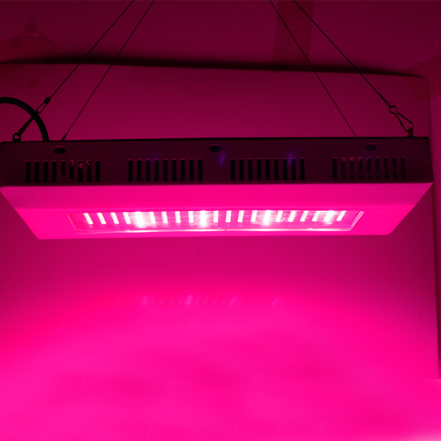 Free Shipping 300W 204Red+48Blue SMD-Chip Hydroponic LED Grow Lights Garden Plants Lighting Horticulture Lamp Hot Selling<br><br>Aliexpress