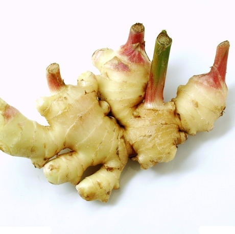 2015 New Sale Medium Vegetables And Fruit Seeds Fresh Ginger Monoflord Four Seasons Bonsai Plants For Home Garden 100 Seeds/bag(China (Mainland))