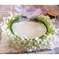 Fashion Gypsophila Baby s Breath Crown Babys Breath Flower Girl Crown Handmade White Floral Headband Bridal