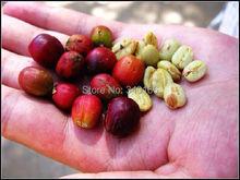 Free Shipping 1KG Arabica CoffeeOriginal High Quality Ethiopia ELIANA Coffee Powder non instant sugar free 1kg