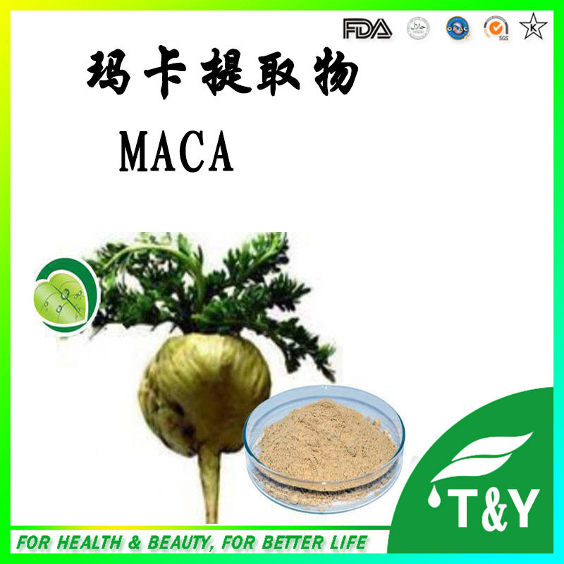Maca Root Extract Powder,Maca Powder,Maca Extract