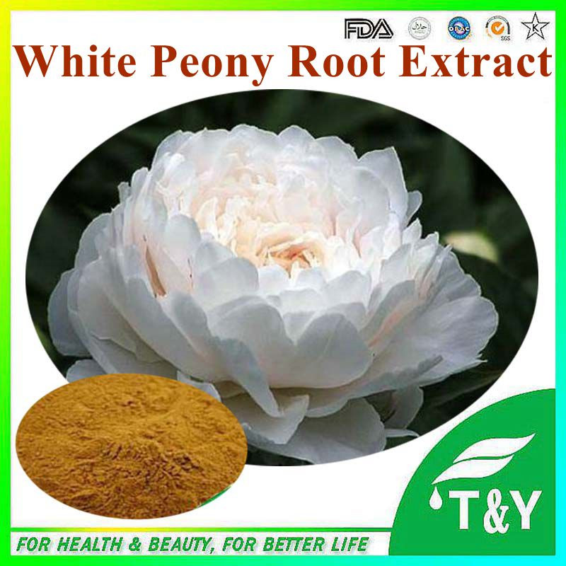 Paeonia lactiflora Pall. extract/ white peony root P.E. 10%-98% Paeoniflorin<br>