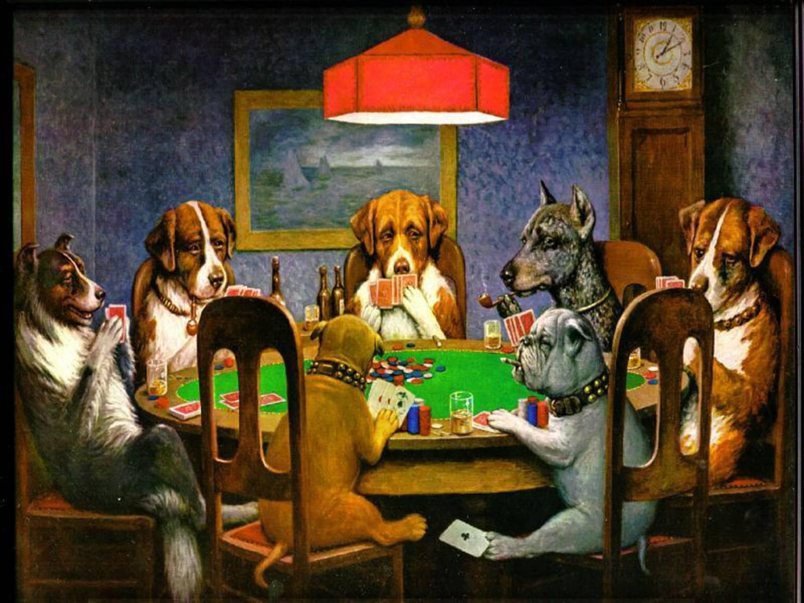 Honden spelen poker cheat dier humor fun moderne decor art ...