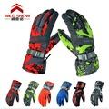 2017 Outdoor hiking camping Winter snow Gloves Waterproof Wind Resistant Warm in Winter ski glove women