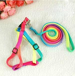 Free Shipping Pets Dog/Cat Kitten Nylon Harness Collar Leash adjustable Collar Lead Colorful Rainbow(China (Mainland))