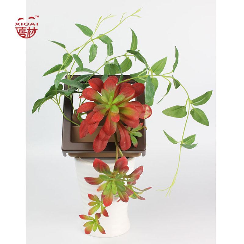 Acheteur de plantes promotion achetez des acheteur de for Acheteur de maison cash