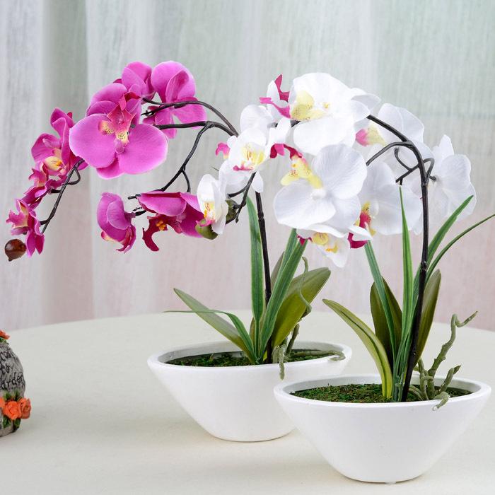achetez en gros d coration des pots d 39 orchid es en ligne des grossistes d coration des pots d. Black Bedroom Furniture Sets. Home Design Ideas