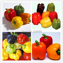 Colorful Sweet Pepper Seeds, Yellow Purple Red Green White orange black Mix Sweet Bell Pepper Seeds - 20 Seed particles(China (Mainland))