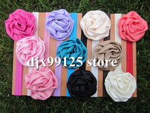cute hair band price