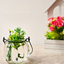 2015 special offer limited vase decorative vases transparent flower home accessories decoration pots planters glass & crystal(China (Mainland))