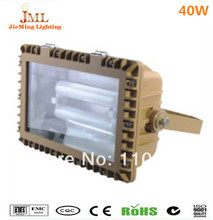 professional explosion-proof lamp 40w 60w 80w 100w 120w 150w  induction lamps explosion-proof lamp(China (Mainland))