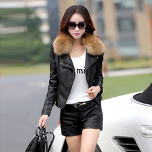 leather jacket women short motorcycle leather jacket spring and autumn ladies raccoon fur collar leather coat  size m-5xl 926 (China (Mainland))