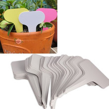 Gris couleur 100 pcs 6 x 10 cm étiquette de jardinage plantes de type T balises marqueurs pépinière bac jardin étiquettes en plastique bonsaï étiquettes(China (Mainland))