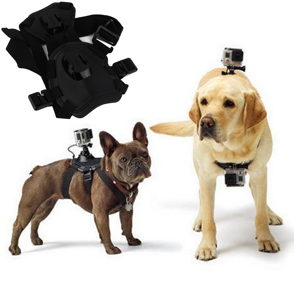 Fetch dog Mount dog Harness Chest Strap Mount for Gopro Camera Hero 4/3+/3/SJ4000 dog chest strap Accessories 2015<br><br>Aliexpress