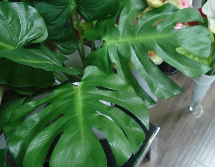 Online buy wholesale artificial banana leaves from china for Artificial banana leaves decoration