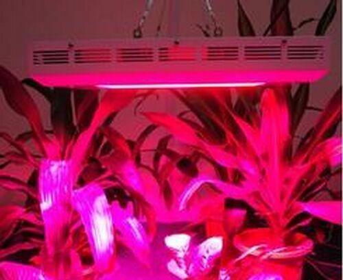 Купить Оптовая продажа полного спектра 300 Вт Привело Светать 100 шт. красный синий белый уф ик-светодиодов для роста Лекарственных растений гидропоника цветение
