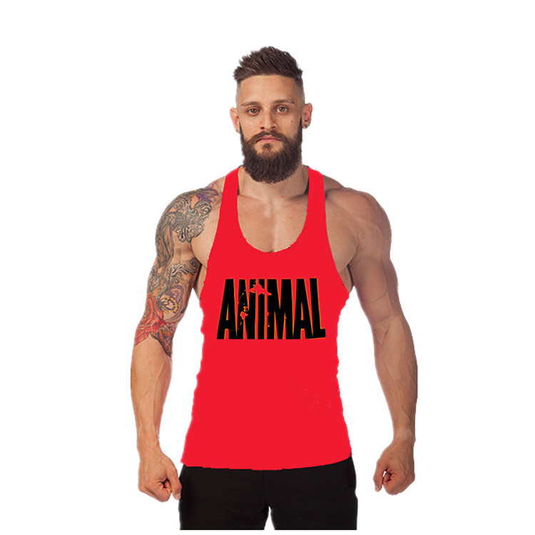 Complete range of Animal Supplements at the lowest price! Read Animal reviews from Read Customer Reviews· Satisfaction Guaranteed· New Deals Every WeekService catalog: Huge Supplement Catalog, Cheap Canadian Shipping.