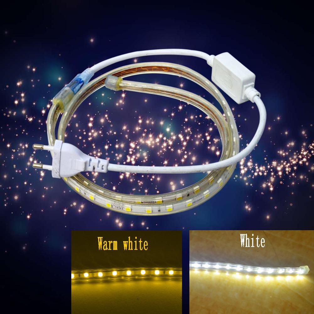 Waterproof IP66 13W 850lm 60-5050 SMD LED Flexible Light Strip (AC 220V / 1M)(China (Mainland))