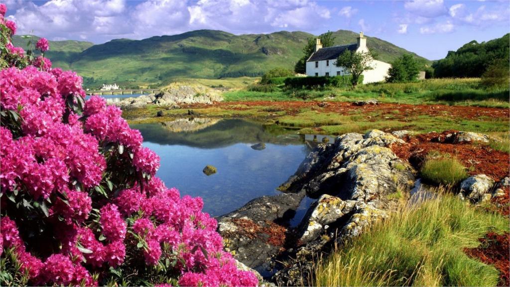 http://g02.a.alicdn.com/kf/HTB1uAtDLXXXXXaxXXXXq6xXFXXXD/clouds-font-b-trees-b-font-forest-font-b-Scotland-b-font-water-lake-12x18-20x30.jpg