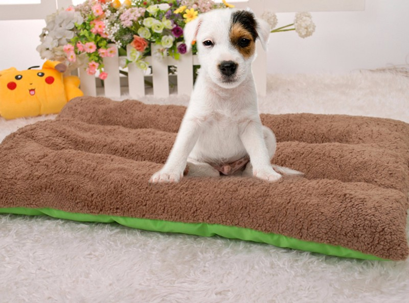 dog's bed800px-S2