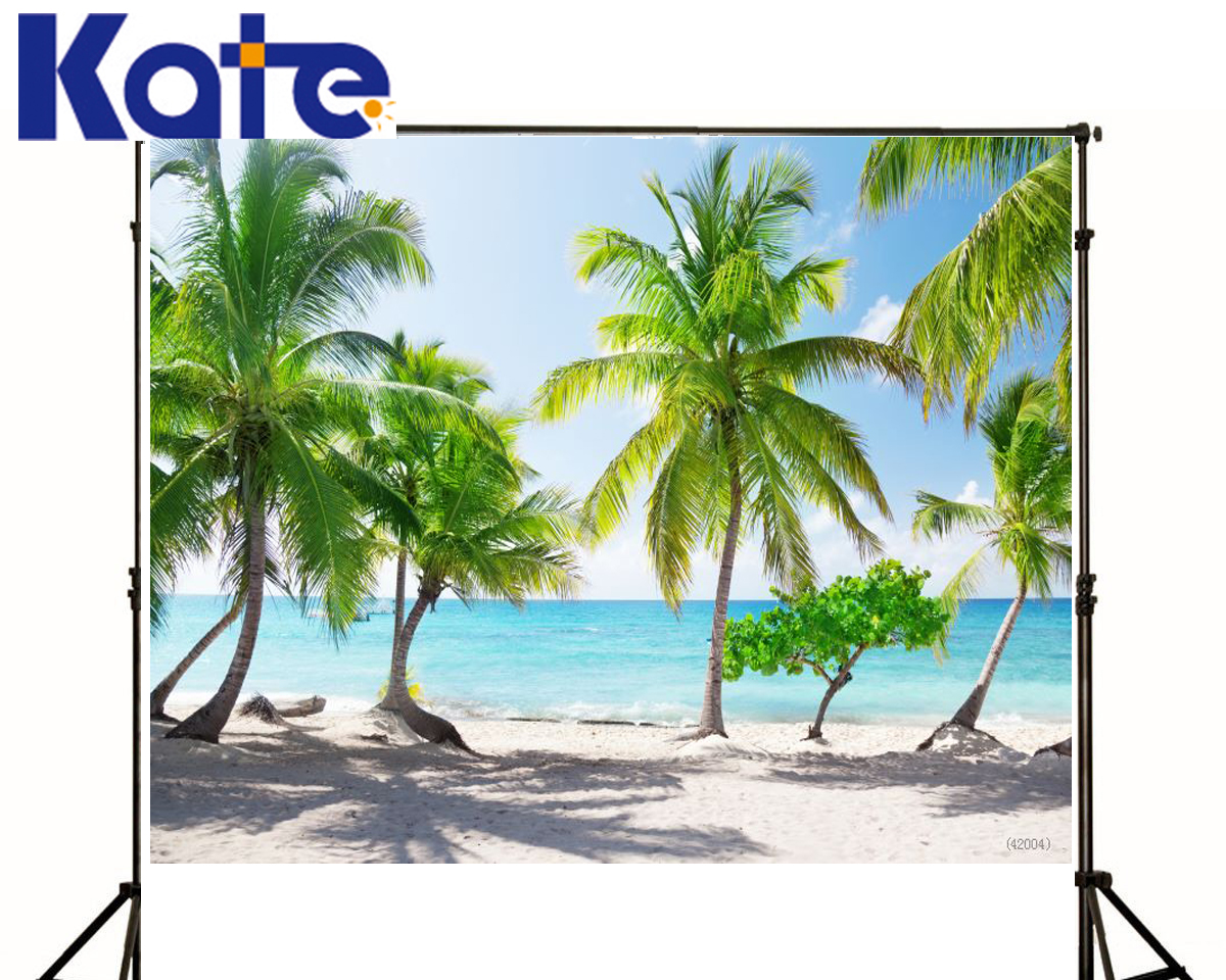 font b Photo b font Backdrops Trees Land Sea Sun White Clouds Blue Sky font
