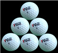 Free Shipping 3PCS Golf Two Layers Training Golf Game Ball High Grade Wholesale Direct Manufacturer Promotion