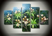 freesia flower promotion