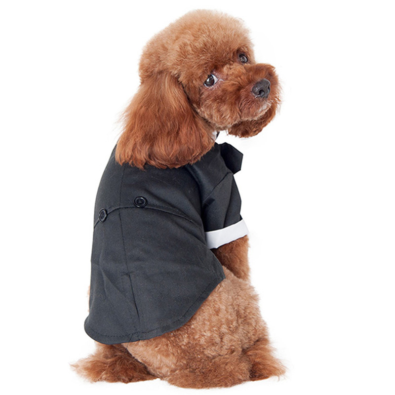 chien smoking promotion achetez des chien smoking promotionnels sur alibaba group. Black Bedroom Furniture Sets. Home Design Ideas