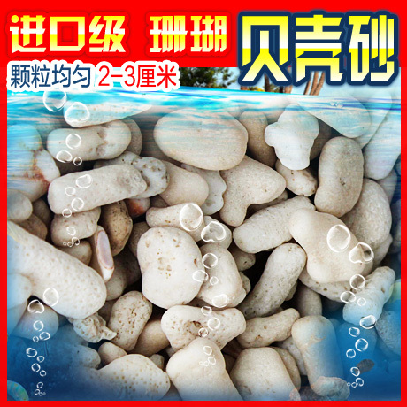 Import level 2-3 cm aquarium coral shell sand filter material never seen domestic shell sand filter(China (Mainland))