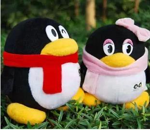Genuine Tencent QQ penguin doll, couple penguin plush toys, dolls wedding / birthday / Christmas / girlfriend gifts 50cm(China (Mainland))
