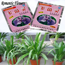 2pcs / Pack , Home Gardening Pesticide Carbendazim Fungicide Bulbs Potted Flowering Plants Dedicated 20 G(China (Mainland))