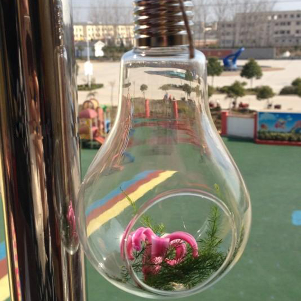 Glass Bulb Lamp Shape Flower Water Plant Hanging Vase