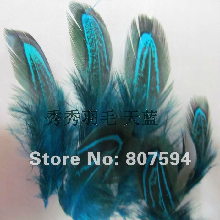Retail Free Shipping 24 pcs 5 8cm party decorative feather pheasant plume feather natural feathers Clothing