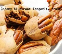 2014 Direct Selling Freeshipping Bag Suplementos Protein Macadamia Nut Zero Food New Cream Brigitte Root Longevity Fruit