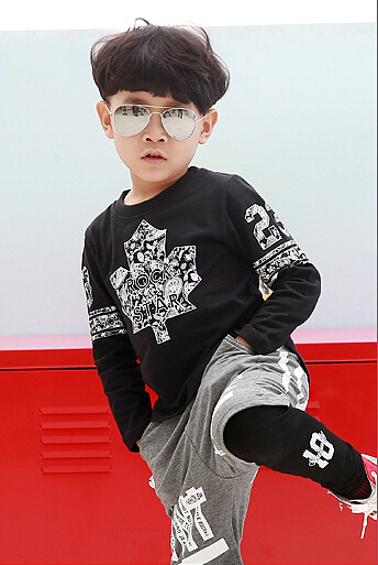 Baby Boys Autumn Casual T-shirts Fashion Children Full Sleeves Tops Leave Pattern Cotton Kids Casual Children Clothing 5pcs/LOT<br><br>Aliexpress