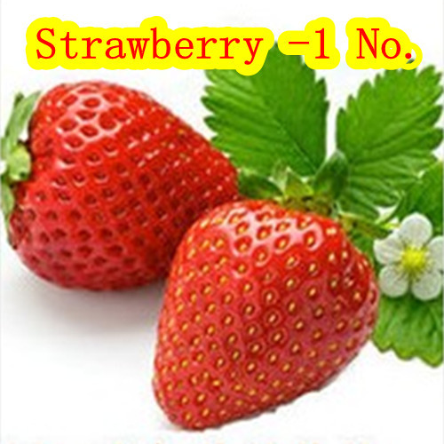 Strawberry on the 1st vegetables watermelon and melon seeds (seeds) 100 / pack home garden free delivery(China (Mainland))