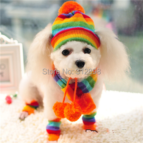 Pink/Yellow/Rainbow Striped Hat/Scarf/Socks Winter Pet Puppy Accessories For Dogs PT045 XXS/XS/S/M/L Chihuahua Cat Products(China (Mainland))