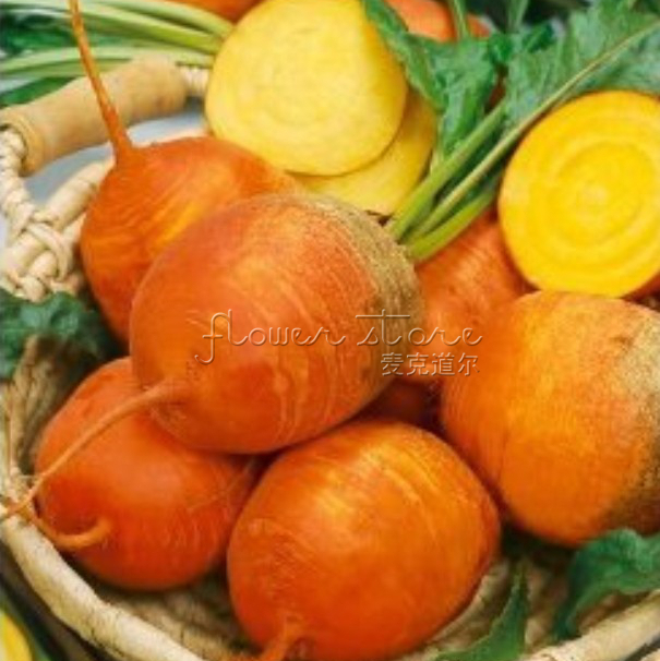 Гаджет  Free Shipping 100 Golden Beet Seeds Good quality heirloom seeds ,very nutritious vegetable  None Дом и Сад