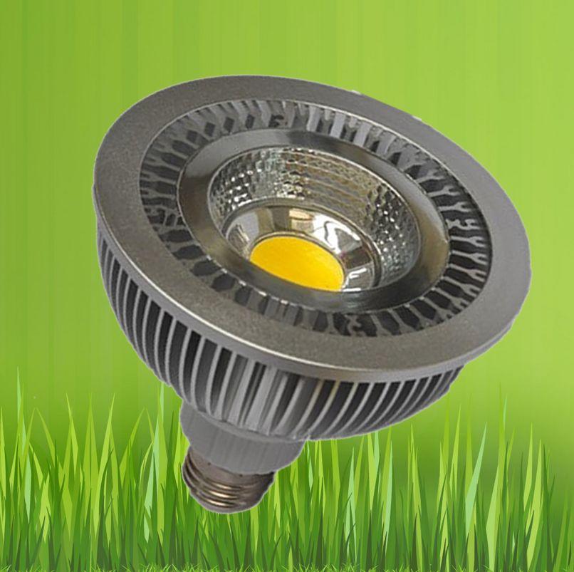 Free Shipping 6pcs/lot Epleds COB 10W 850lm Warm White E27 LED PAR30 Parlight led saving energy bulb light led spotlight(China (Mainland))