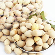 Freeshipping New 1000 grams of fresh ginkgo Green Food Xuzhou super premium nuts raw ginkgo nuts