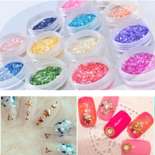 Buy 12 Colors Set Crushed Shell Chips Powder Dust Glitter Nails Polish Gel UV Acrylic 3D Tips Nail Art Decoration Tools Manicure for $2.03 in AliExpress store