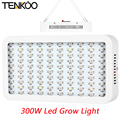1Pcs Full Spectrum 100 Leds 300W Grow Light Indoor Hydroponics Flower LED Plant Grow Lamp Light