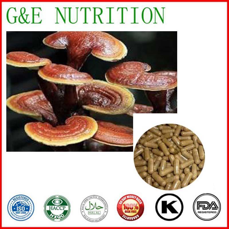 Natural Reishi Mushroom Capsule, Reishi Mushroom Rxtract Powder with Health Functions    500mg x 700pcs<br><br>Aliexpress