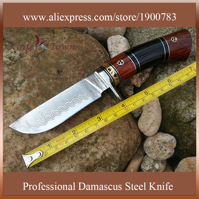 DT047 Sharp Fixed blade Hunting Knife forged Damascus Steel camping knife wood handle survival Tactical tool edc coltelli - China Town store