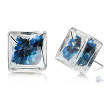 """New Fashion Jewelry Glass Bottle Earrings post Ear Studs Square Blue Flower Transparent 18x18mm( 6/8""""x6/8""""),1 Pair 2015 new(China (Mainland))"""