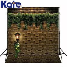 10*20feet(300*600CM) Photography Background Stonewall ivy lamp photo studio background wallpaper Free Shipping