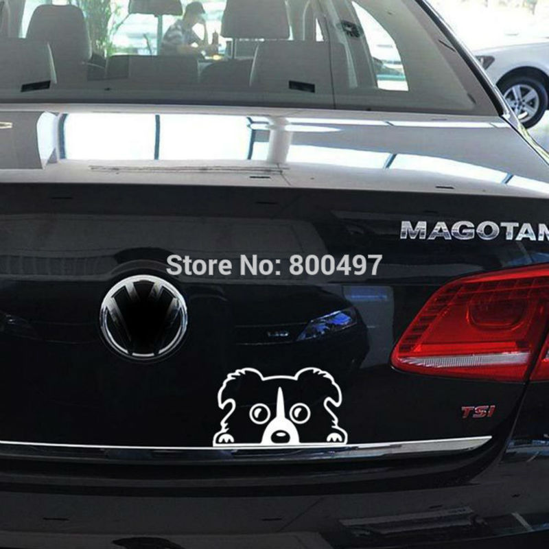10 x Newest Design Car Styling Funny Border Collie Lovely Doggie Decal Decoration Decals for Tesla