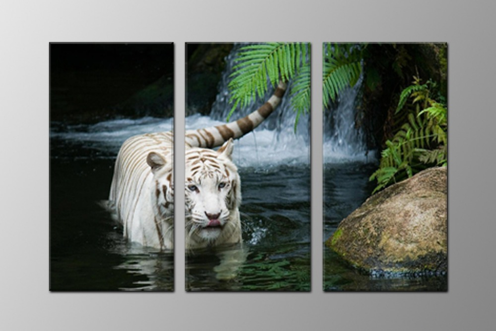 white tiger, large HD canvas print for living room, wall art picture photo gift painting artwork